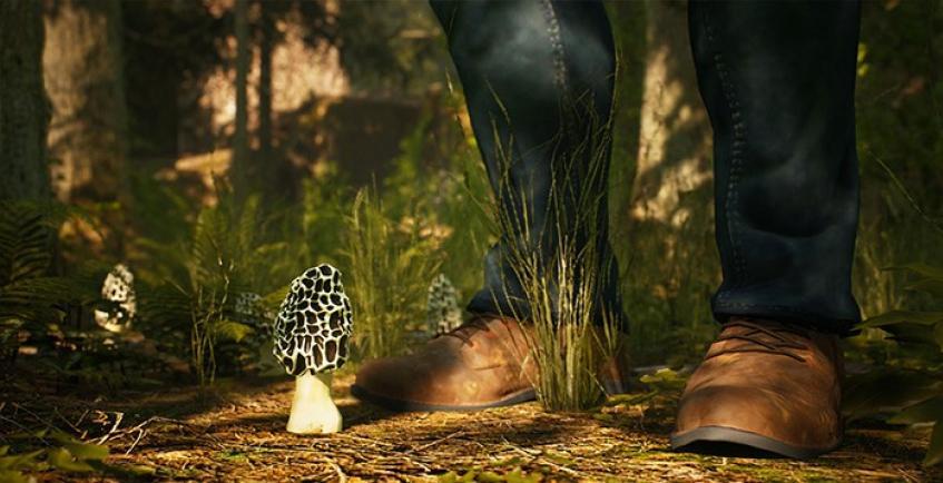Анонсирован симулятор охоты на сморчки