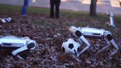 Киберпанк близко — стая роботов-собак играет в футбол и делает сальто