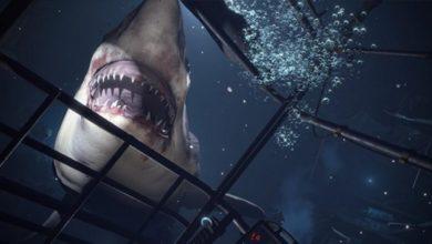 Sony хочет свой Half-Life: Alyx. Готовится крупный VR-проект