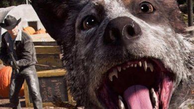 Far Cry 6? Ubisoft хвалится секретной ААА-игрой