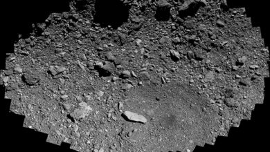 Фото дня: поверхность астероида Бенну в высоком разрешении