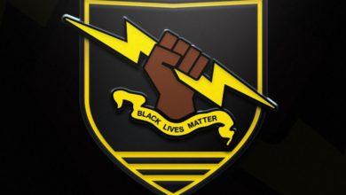 Игроков Destiny 2 призывают поддержать движение BLM