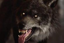Оборотни и мутанты. Werewolf: The Apocalypse с кинематографическим трейлером