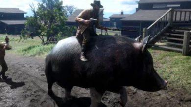 Пигби – фанаты Red Dead Online изобрели новый вид спорта