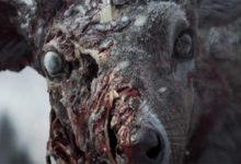 Зима и олень-зомби. Состоялся анонс State of Decay 3