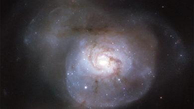 Фото дня: потусторонний обитатель космического пространства