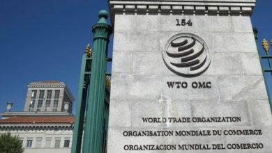 Международному регулятору не понравилось российское импортозамещение в сфере IT. Оно мешает открытому рынку