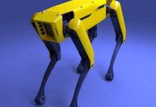 S.T.A.L.K.E.R. выходит на новый уровень. В Чернобыльскую зону завезли робота-пса от Boston Dynamics