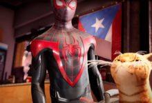 В Spider-Man: Miles Morales будет кот. Все в восторге