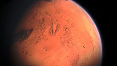 Микроорганизмы земного типа могут выжить на Марсе, считают российские учёные