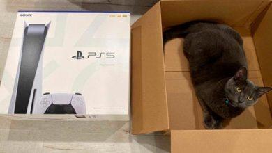 Покупатели PS 5 продолжают получать чужие посылки. Amazon пытается извиниться