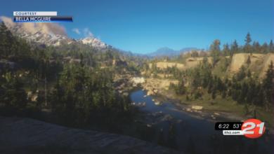 Скриншот из Red Dead Redemption 2 попал в телепередачу с фотографиями дикой природы